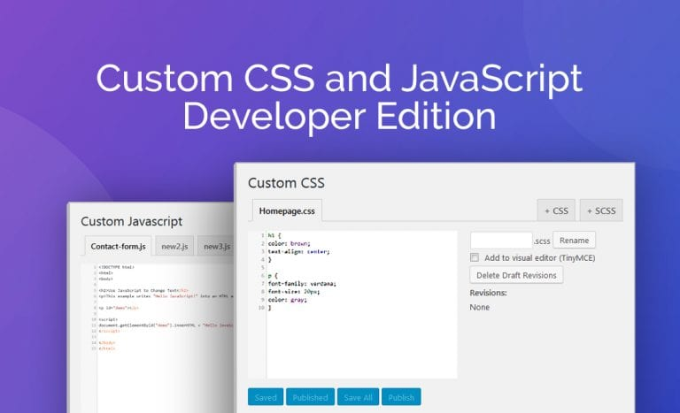 Custom CSS and JavaScript Developer Edition