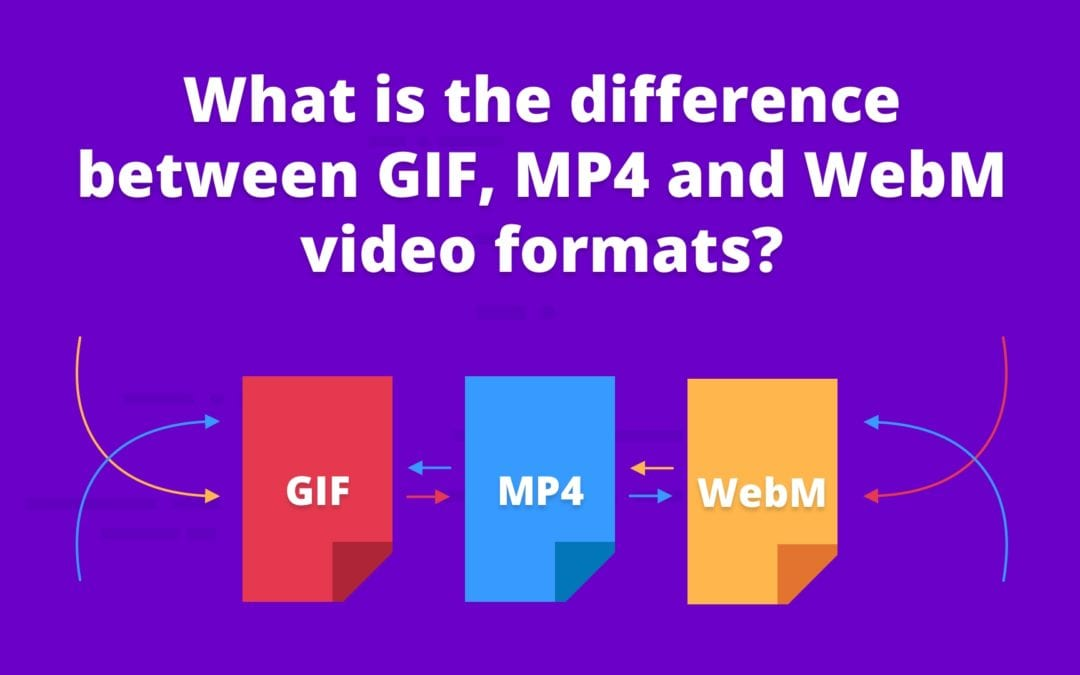What is the difference between GIF, MP4 and WebM video formats?